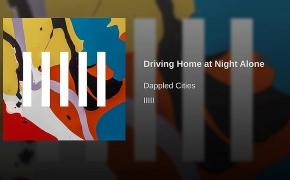 [metų gabalas:] DAPPLED CITIES – Driving Home at Night Alone