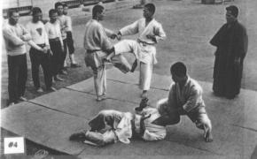 Karate vėlės