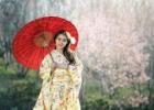 12 faktų apie keistenybių kupiną Japoniją