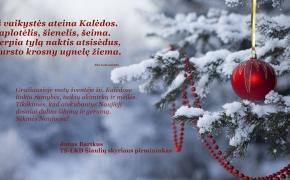 Sveiki belaukiantys Šv. Kalėdų