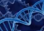 Mikrobų genetika. Įvadas