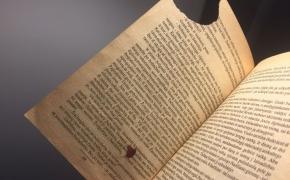"""Knyga, kurią skaitau 16 metų: """"Žemjūrės burtininkas"""" ir netikėtai atrastas jo tęsinys"""