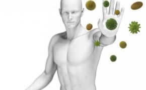 Imunitetas – sąvoka, dažniausiai prisimenama sveikatai sustreikavus