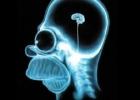 Apie mąstymo klaidas ir kognityvinę elgesio terapiją