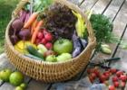 Ieškomi gamtinės žemdirbystės produktų valgytojai
