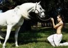 Arklys ir Džolė