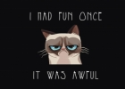 """Kas tas """"Grumpy Cat""""?"""