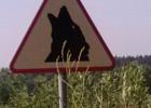 Lenkiškas kelio ženklas. Brrr…