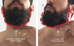 Barzdos auginimo patarimai