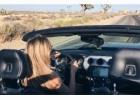 Kelionė automobiliu po Ameriką – 9 diena – Mojave dykuma ir Joshua Tree Park