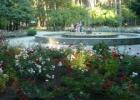 Baltosios rožės ir bučiuotinos varlės miestas Alytus.