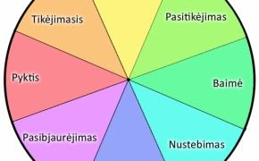 48 pagrindinės emocijos ir Robert Plutchik emocijų ratas