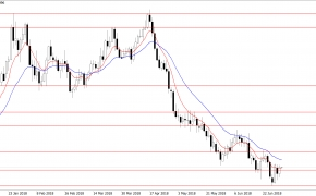 Valiutų rinkos apžvalga 2018-07-04 d.