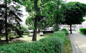 Varšuvoje ieškojau Jokūbo Jasinskio kapo