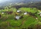 Žemės pardavimo saugikliai: ribojo užsieniečiams, bet apribojo paprastiems lietuviams