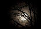 Svarbus mėnulio užtemimas – kviečiu bendrai maldai.