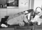 Vienok: kasdienybės fotografija ir pasakojimai iš po patalų