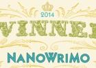 NaNoWriMo arba kaip parašyti romaną per mėnesį