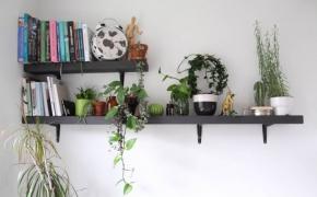 Nauji virtuvės baldai. Kaina ir visos svarbios detalės