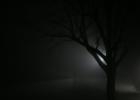 Atsikeli ir naktis: kaip išgyventi tamsą?