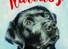 """Apie Greg Kincaid knygą """"Šuo vardu Kalėdos"""""""