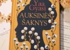 AUKSINĖS ŠAKNYS – Yaa Gyasi