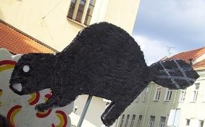Mokslo metų pradžia Vilniaus universitete: 2012 rugsėjo 3 diena