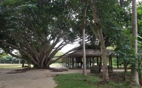 Tylos stovykla vienuolyne Tailande