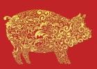 Jaunatis, kai švenčiami Kinų Naujieji Kiaulės metai