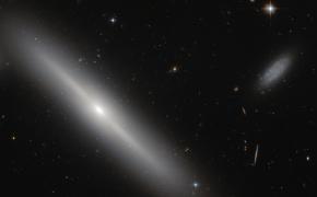 Kąsnelis Visatos CCXXVI: Įvairiausia gyvybė