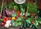 Gamtinės žemdirbystės seminaras Druskininkuose