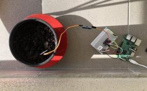 Rožės monitoringas su Raspberry