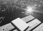 Plaukimas per skausmo jūrą, arba rašymo terapija