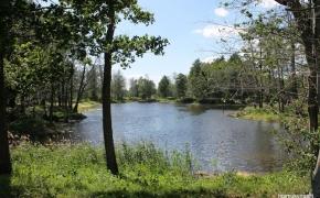 Kirkilų apžvalgos bokštas bei pasivaikščiojimas karstinių ežerėlių takais (Biržai)
