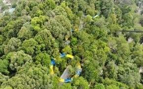 Ilgiausia vandens čiuožykla pasaulyje: 4 minutes trunkantis čiuožimas Malaizijos džiunglėmis