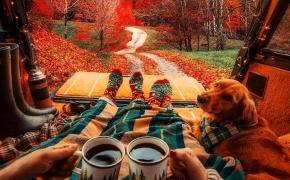 Šios dienos nuotrauka: ruduo, sąmoningumas, gyvenimo ir visatos dėsniai, stebuklai