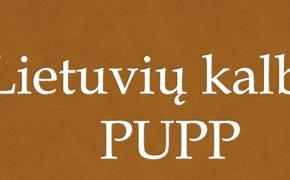 2019-2020 m. PUPP, brandos egzaminų organizavimo ir vykdymo tvarkos aprašas