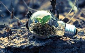 Pasaulis pagal ekologinę etiką (Mokslo populiarinimo konkursas)