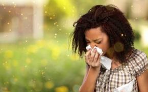 Alergija – šių laikų rykštė (Mokslo populiarinimo konkursas)