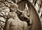 Mirties bučinys (Mokslo populiarinimo konkursas)