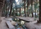 Mauritanija – Afrikos dykumų klasika