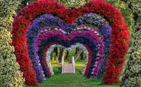 Gėlių festivalis sugrįš į Pakruojo dvarą