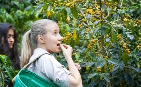 Jos darbas yra ragauti: kavos ekspertė apie tai, ko nežino 99 procentai pasaulio gyventojų