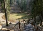 Geriausios karantino vietos Lietuvoje: Meškos šikna, Velnio duobė, o gal Uošvės liežuvis?