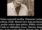 Šios dienos citata: rašytojas Richard Powers apie nematomus medžius ir kas svarbiausia