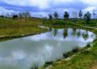 Japoniškas sodas (Kretingos rajonas)