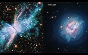 Kąsnelis Visatos CDXXXVIII: Branda