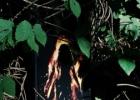 Rasa Ambraziejienė: Laumakio raganos. Tautotyrinės sakmės