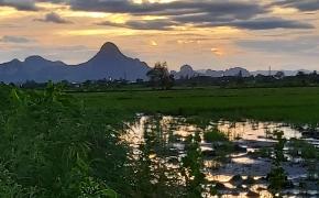 Arūnas: Tailande atėjo ramybė, dingo chaosas…