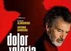 """Filmas: """"Skausmas ir šlovė"""" / """"Dolor y gloria"""""""